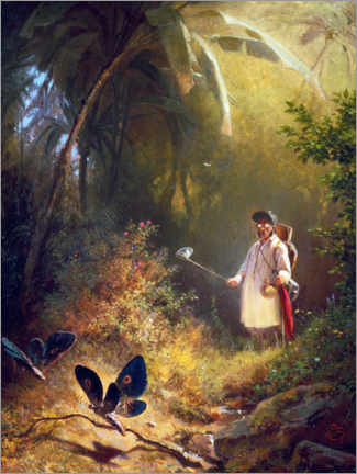 Canvas print  The Butterfly Hunter - Carl Spitzweg