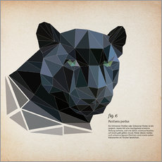 Wall sticker  fig6 polygon Panther square - Labelizer
