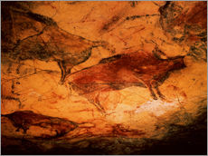 Gallery print  Bison in the cave of Altamira - Prehistoric
