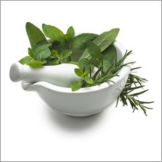 Gallery print  Herbs in a mortar