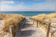 Wall sticker  Way to the beach on the Baltic Sea - Christian Müringer