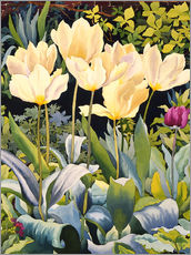 Wall sticker  Pale tulips - Christopher Ryland