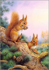 Gallery print  Pair of Red Squirrels on a Scottish Pine - Carl Donner