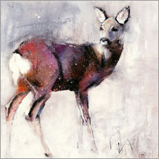 Gallery print  Shy deer in the snow - Mark Adlington