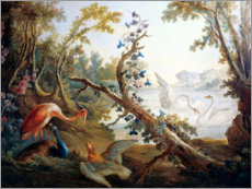 Premium poster  Lake with swans, a flamingo and a peacock - François Boucher