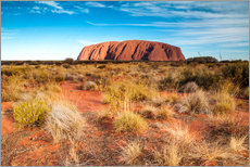Gallery print  Ayers Rock in the evening - Matteo Colombo