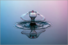 Gallery print  Soap bubbles water droplets - Stephan Geist