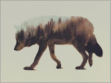 Wall sticker  Norwegian Woods The Wolf - Andreas Lie