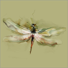 Gallery print  Dragonfly in watercolor