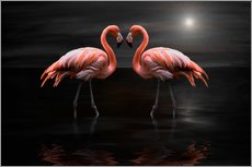Gallery print  Flamingos at night - Heike Langenkamp
