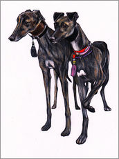 Gallery print  Brindle greyhounds - Jim Griffiths