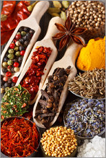 Wall sticker  Colorful aromatic spices and herbs