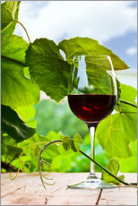 Gallery print  Glass of Red Wine in Vineyard