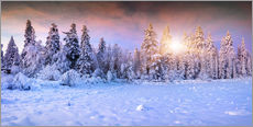 Gallery print  Winter Sunrise in the Mountain Forest