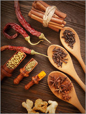 Gallery print  Spices Still Life