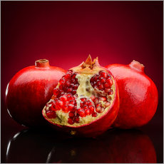 Gallery print  Red Pomegranate