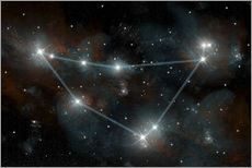Wall sticker  Artist's depiction of the constellation Capricorn the Sea Goat. - Marc Ward