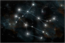 Wall sticker  Artist's depiction of the constellation Gemini the Twins. - Marc Ward