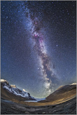 Gallery print  Milky Way over the Columbia Icefields in Jasper National Park, Canada. - Alan Dyer