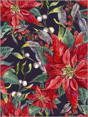 Gallery print  The Poinsettia