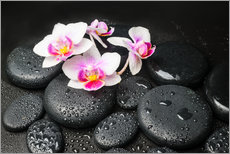 Wall sticker  Spa Still Life with Orchid