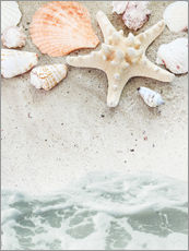 Wall sticker  Sea Beach with Starfish
