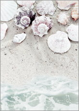 Gallery print  Beach with Shells