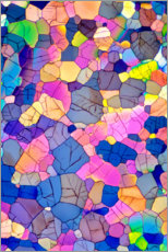Gallery print  Caffeine crystals, light micrograph - David Parker