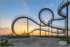 Gallery print  Tiger and Turtle Duisburg - Michael Valjak
