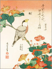 Gallery print  Mirabilis jalapa and grosbeak - Katsushika Hokusai