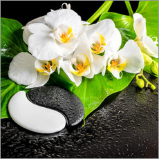 Gallery print  Spa arrangement with white orchid