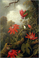 Wall sticker  Hummingbird and Passionflowers - Martin Johnson Heade