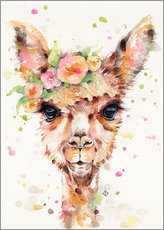 Gallery print  Little llama - Sillier Than Sally