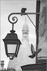 Wall sticker  Montmartre pigeons with Sacre Coeur
