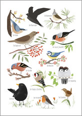 Wall sticker  Garden birds (German) - Sandy Lohß