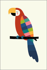 Gallery print  Rainbow Parrot - Andy Westface