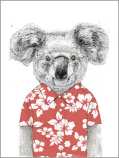 Gallery print  Koala Bear with Hawaiian Shirt - Balazs Solti