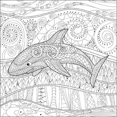 Colouring poster  Patterned Shark