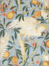 Wall sticker  Cockatoo and Pomegranate - Walter Crane