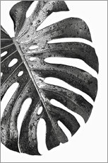 Wood print  Black monstera 01 - Art Couture