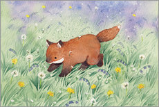 Canvas print  Fox in the meadow - Michelle Beech