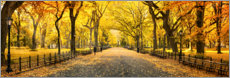Canvas print  Central Park in Autumn - Art Couture