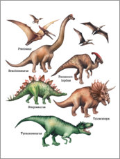 Wall sticker  The names of the dinosaurs