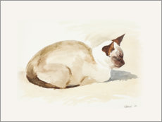 Acrylic print  Resting kitten, watercolor - Mary Want