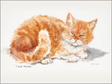 Gallery print  Little Garfield - Mary Want