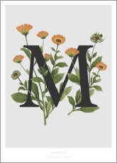 Premium poster M is for Marigolds