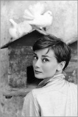 Canvas print  Audrey Hepburn at the dovecote - Celebrity Collection