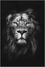 Acrylic print  LION - Art Couture