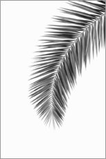 Gallery print  Palm Frond - Art Couture