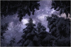 Wood print  Winter night under the Milky Way - Christian Möhrle